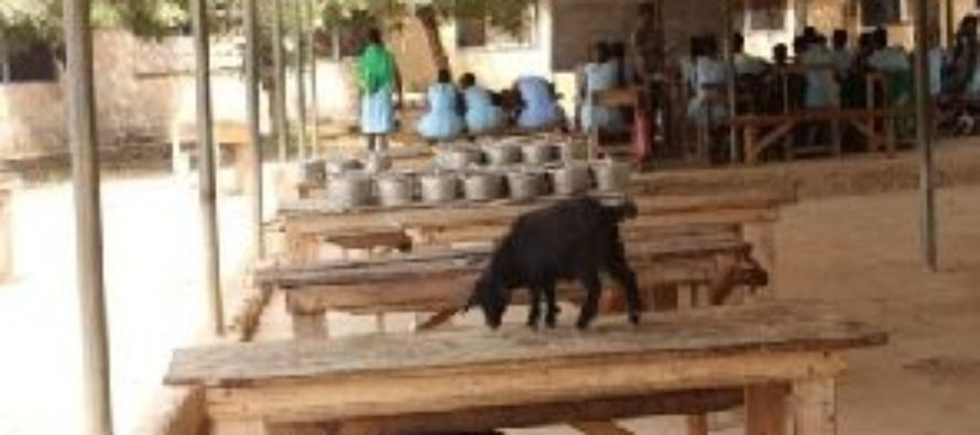 Students share dining hall with goats at Klo-Agogo SHS