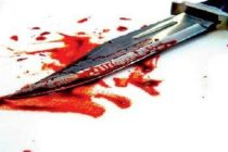 'Mentally challenged' woman stabs 32-year-old son to death