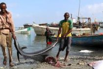 Traders and fisherman blamed for Mozambique drought