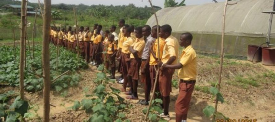 Teachers kick against scrapping Agriculture as major teaching subject