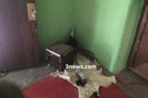 Queenmother, 8 others on the run after failed attempt to steal spiritual stool