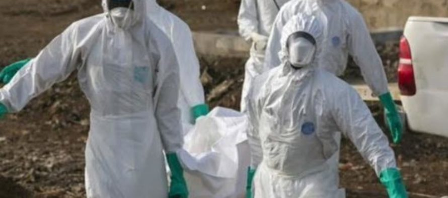 DRC: Panic as Ebola returns, kills 17