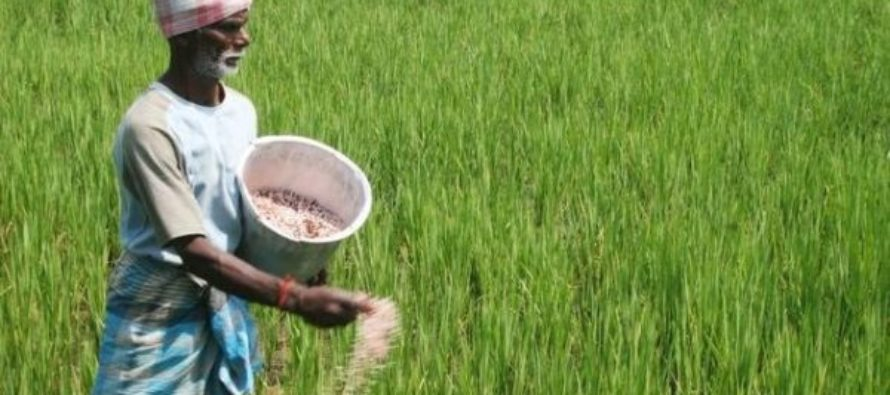 Farmers want Akufo-Addo to 'reform farm input subsidy programme'