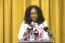 Ministry of Procurement saved Ghana ȼ800 M in 2017 – Adwoa Sarfo