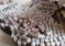 Mushroom production; a promising venture for the youth