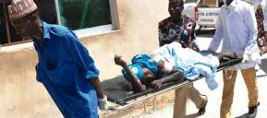 Nigeria: Diarrhoea hits 10 LGAs in Borno, 25 hospitalised