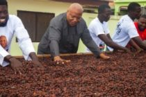 I'll pay cocoa farmers world's best price – Alabi