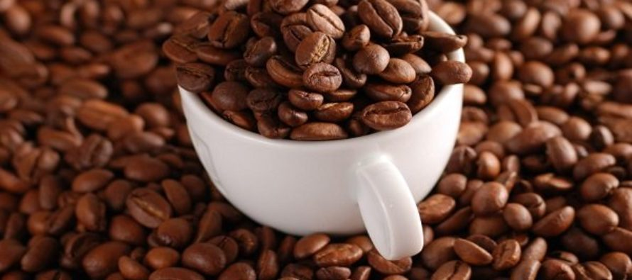 Government commits ¢50 million to coffee production