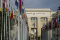 Third of UN workers 'sexually harassed'