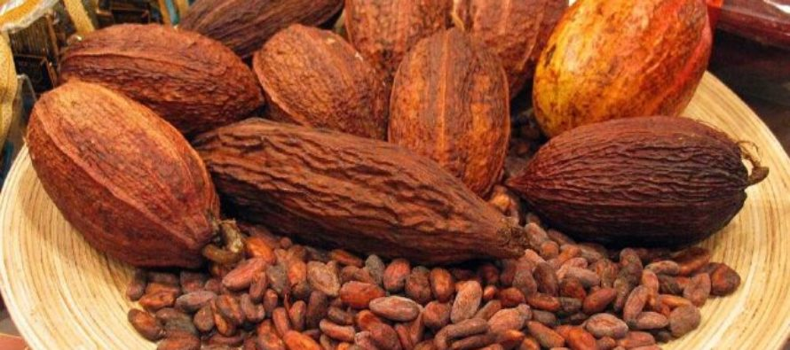 Ghana, Ivory Coast agree to work together to tackle cocoa price volatility