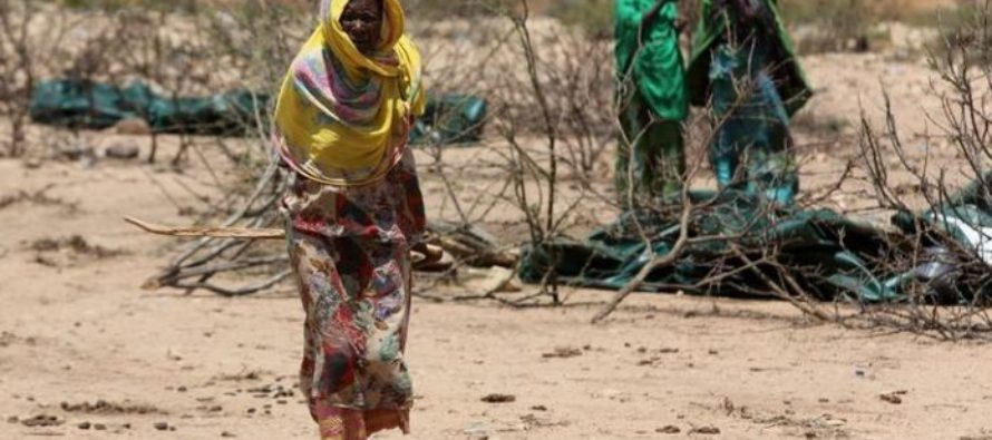 Number of Ethiopians needing food aid surges to 7.7 million due to drought