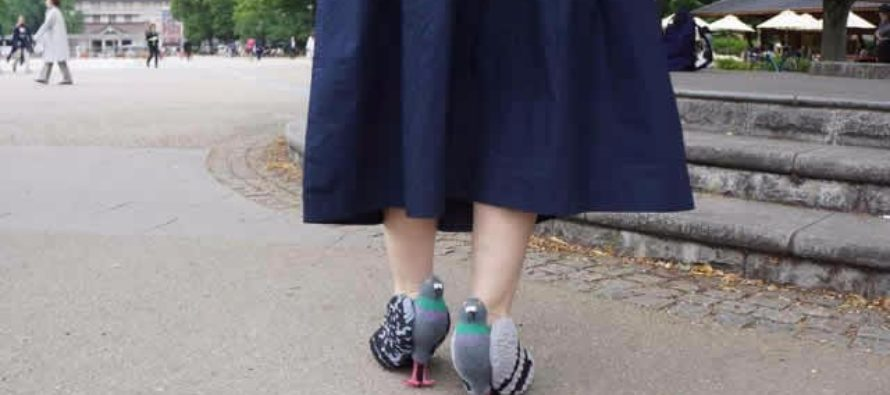 Woman creates pigeon-shaped shoes in attempt to get close to real pigeons