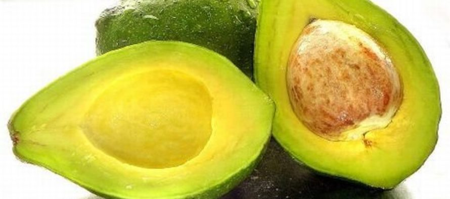 Avocado and Health