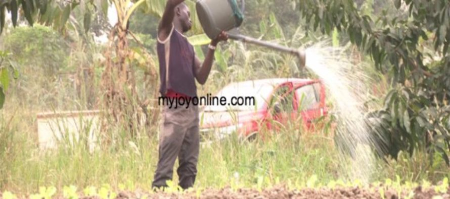 FDA working to discourage growers use of polluted irrigation sources