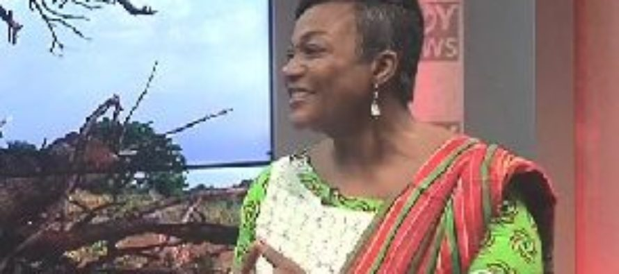 Otiko's apology to Akufo-Addo not enough – NDC Women Organizer