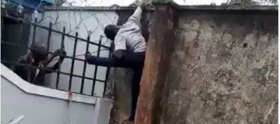 Video: Barbed wire electrocutes thief to death