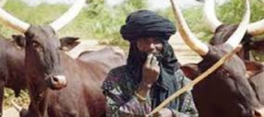 Herdsman arrested for raping married woman on her farm in Agogo