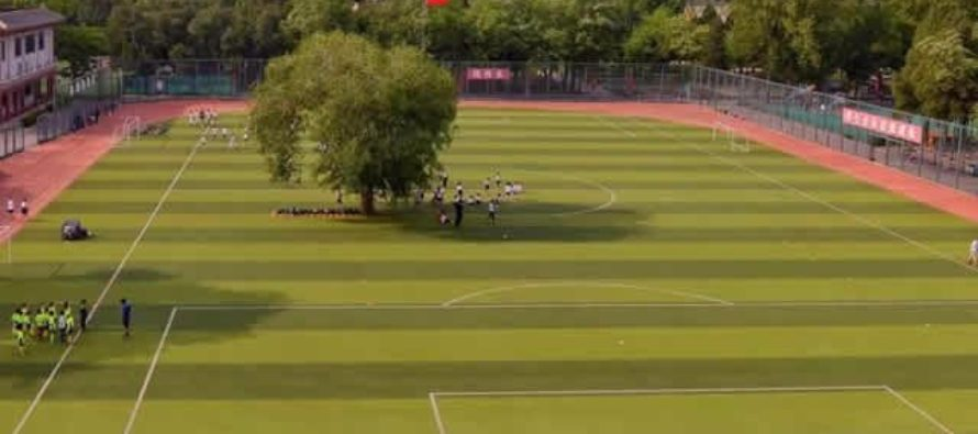 Chinese school's football field has a tree growing in the middle of it