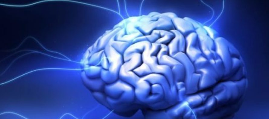 Researchers reveal how to boost brain power