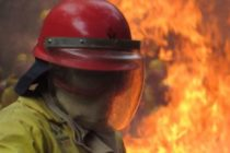 Garden Route wildfire: Seven killed in George, South Africa