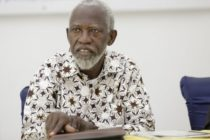Akufo-Addo appoints Adei as NDPC Chairman
