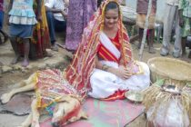 18 year old Indian girl marries a dog
