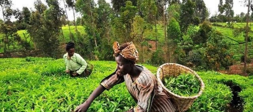 Barclays collaborates with GCX to support farmers, traders on local bourse