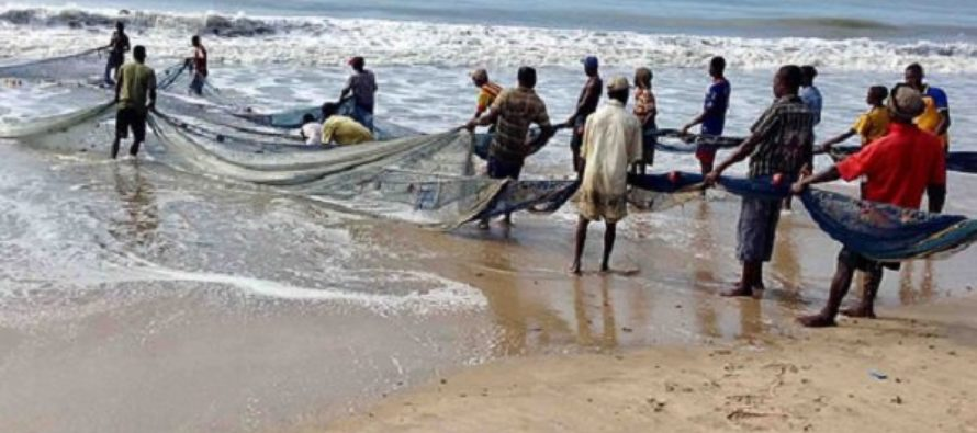 Ghana likely to lose fish stock next year if…Scientist warns
