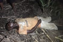 Middle-aged man found dead on his farm in Hohoe
