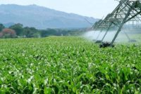 ADB gives GHȼ100m to support agro-inputs access under PFJ