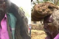 Indian man hasn't cut or washed his hair in 40 years