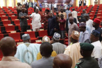 Snake chases lawmakers from Nigerian state parliament