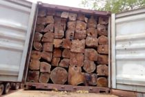 Ghana exported $5.4m worth of rosewood in Sept despite ban – EIA