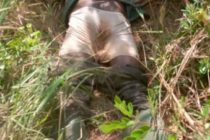 Farmer found dead on his farm in Akatsi South