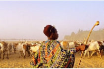 Fulani herdsmen to support police in combating crime