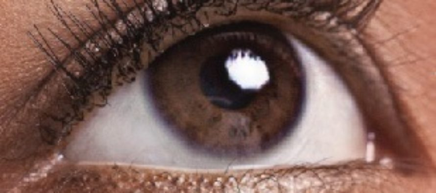 Don't just apply any herbs on the eye – Traditional Healer