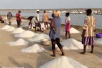 V/R: Salt miners in Keta cry over low prices; call for gov't intervention