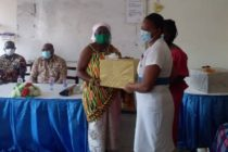 Queen of Ho Dome honours two nurses