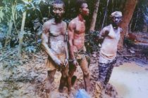 W/R: 3 illegal miners jailed 45 years, fined GHS720,000