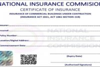 Fitting shops, Commercial buildings must be insured – Insurance Commissioner