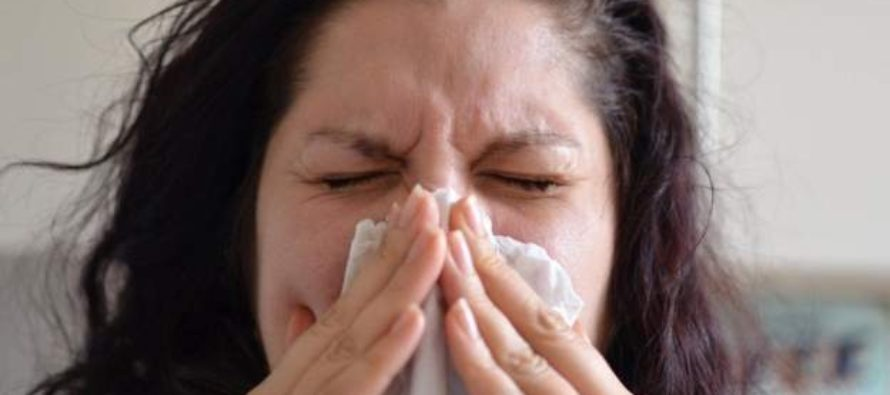 COVID-19 could be like common cold by spring, says expert